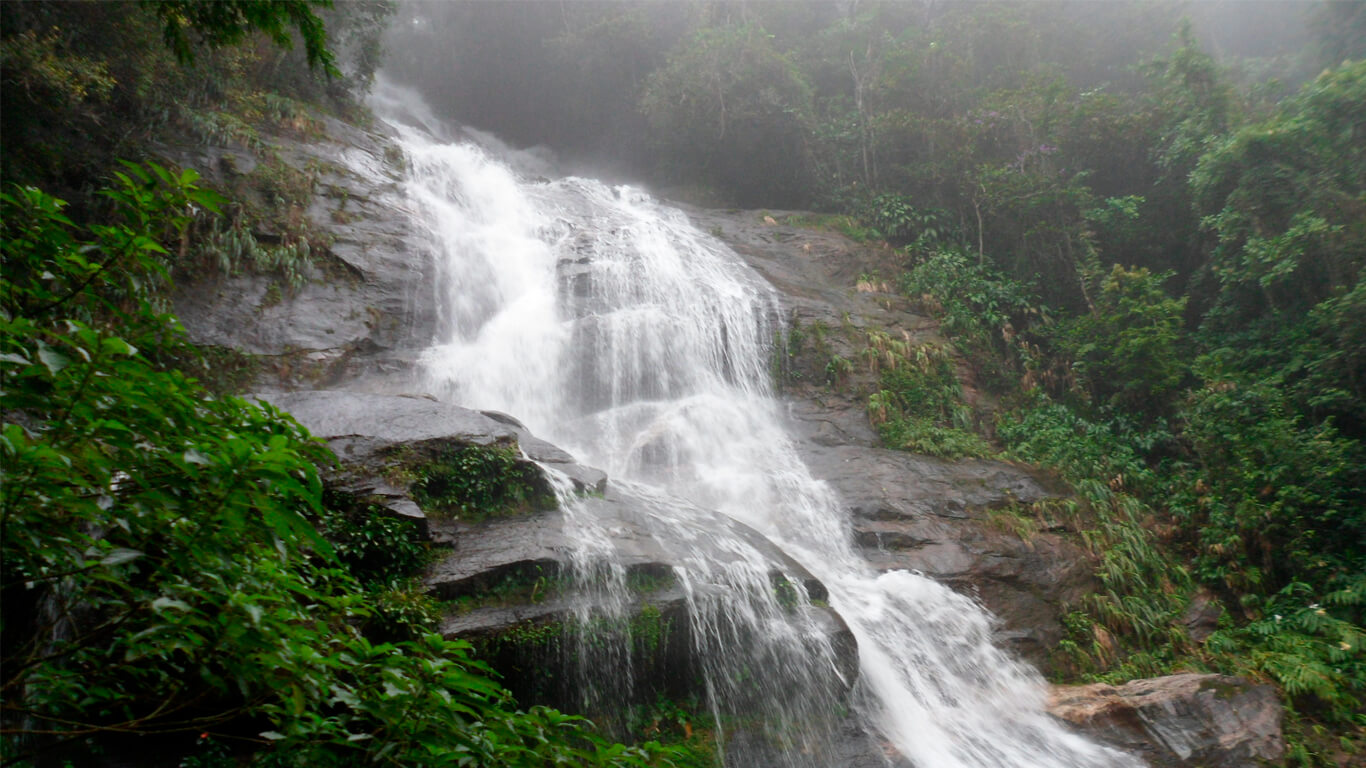 tijuca-forest-cascatinha-05
