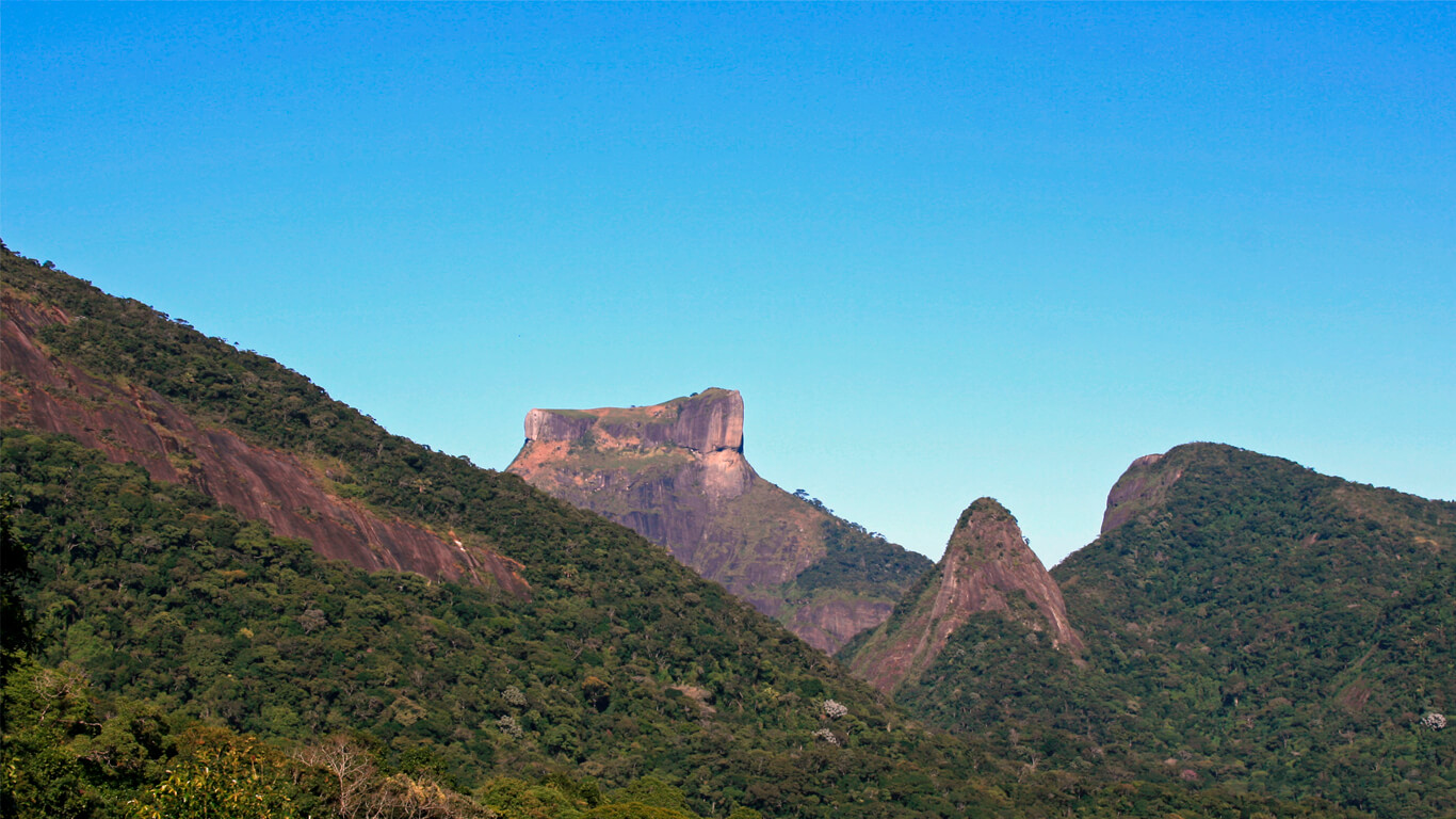 tijuca-forest-view-02